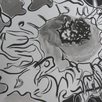 Geyser Dormant