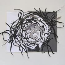 Spinning Urchin