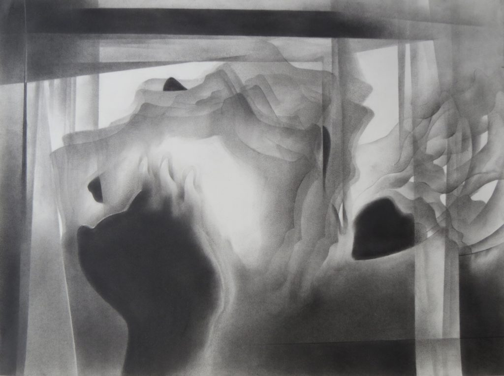 monochromatic black and white graphite drawing nature ocean coral reef