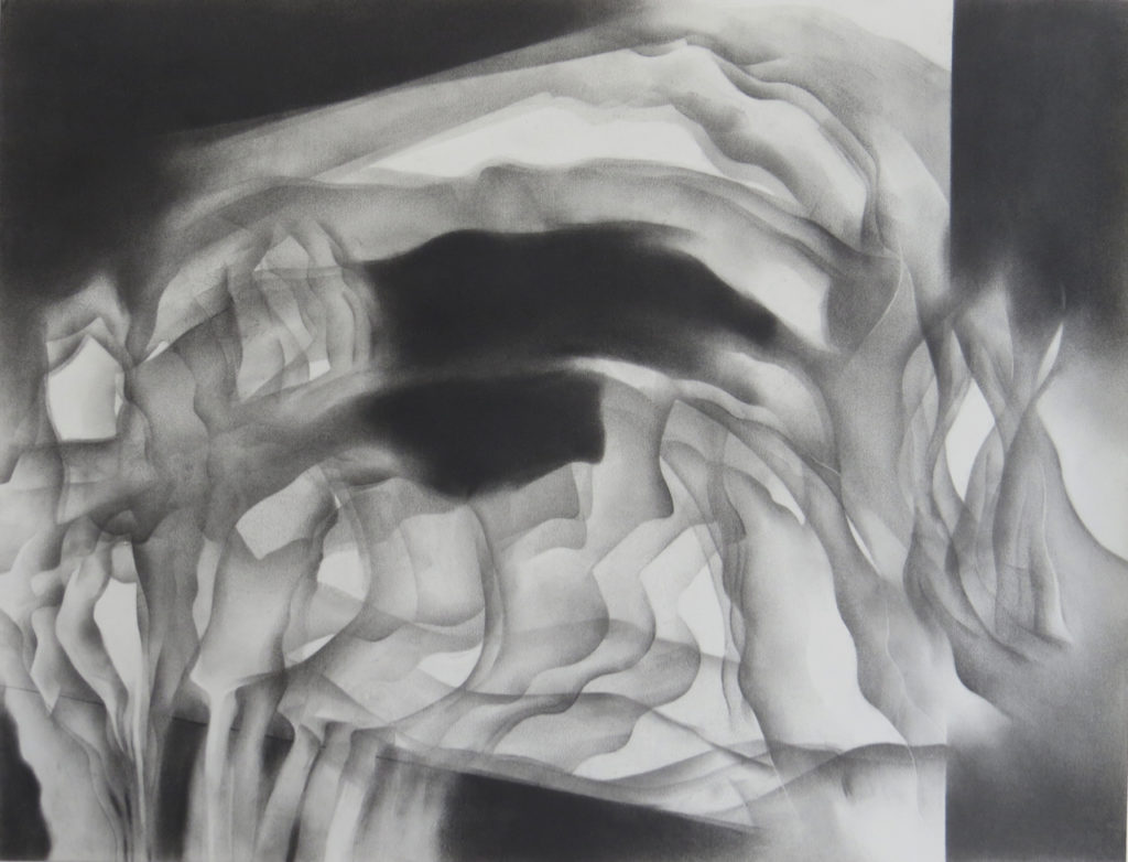 monochromatic black and white graphite drawing nature ocean island