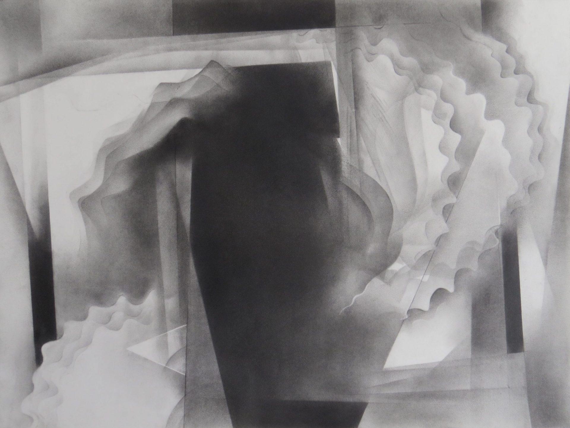 monochromatic black and white graphite drawing nature ocean sponge