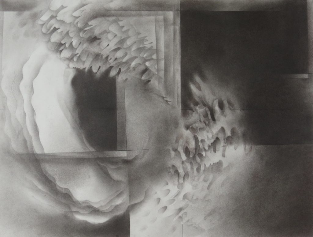 monochromatic black and white graphite drawing nature ocean coral