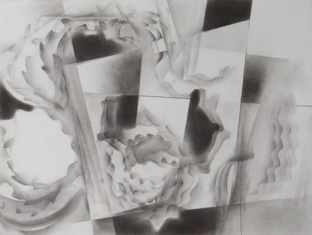 monochromatic black & white graphite drawing nature ocean shells tidal pools