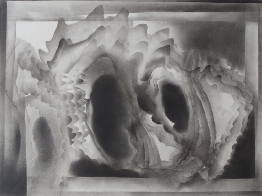 monochromatic black and white graphite drawing nature ocean shells